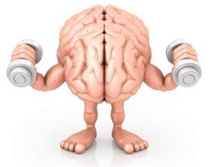 Neuroplasticiteit brein chronische pijn